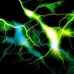 電気柵の電圧について解説