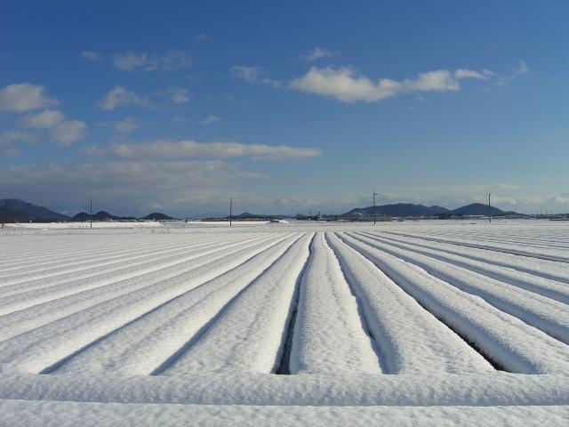 雪が積もるときに気を付けるべき4点